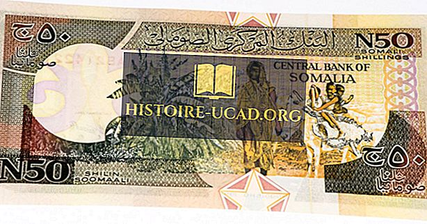 Quelle est la monnaie de la Somalie?