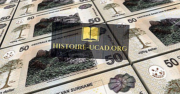Kas yra Surinamo valiuta?