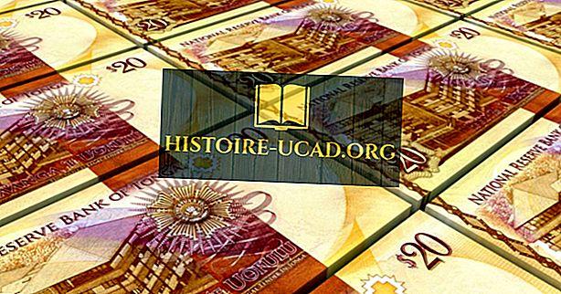Qual è la valuta di Tonga?