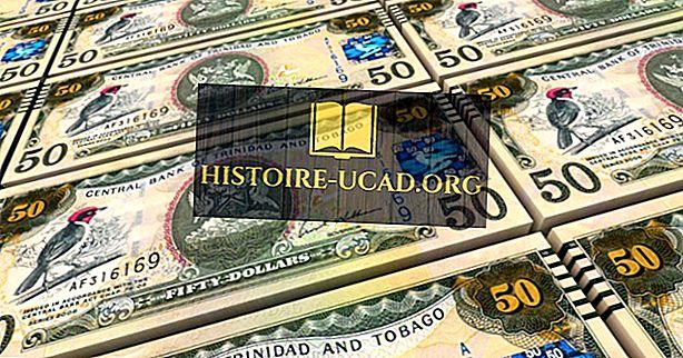 ما هي العملة الرسمية في ترينيداد وتوباغو؟