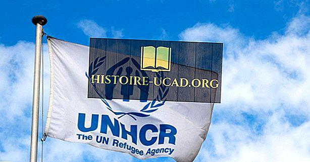 Kurios šalys dovanoja labiausiai JT pabėgėlių agentūrai?