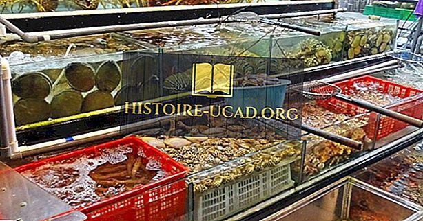 економија - Врхунске земље извознице риба и морских плодова