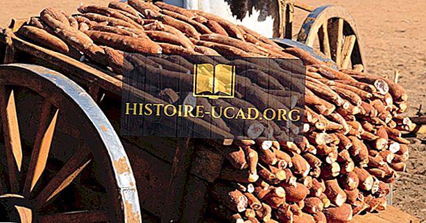 Didžiausios Madagaskaro pramonės šakos
