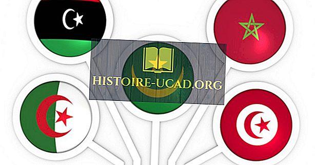 Mis on Araabia Magribi Liit?
