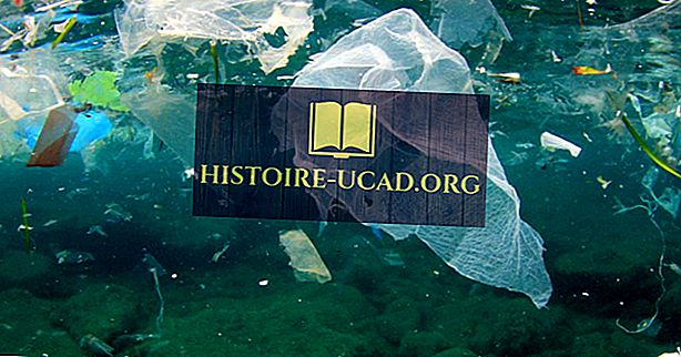 Mis põhjustab ookeani reostust?