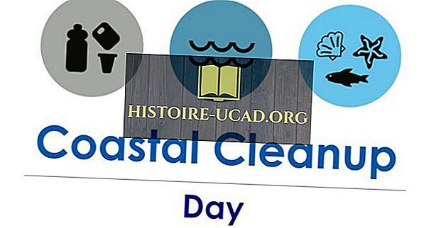 Kaj in kdaj je mednarodni obalni čist dan?