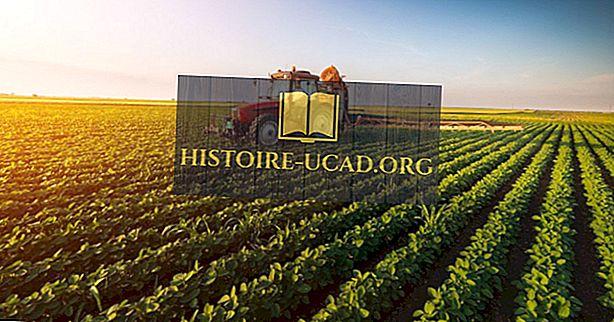 Mis on põllumajanduse keskkonnamõju?