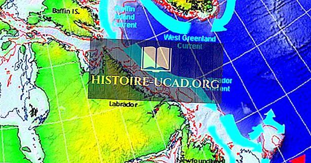 O que e onde está a corrente de Labrador?