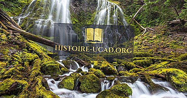 Nacionalni gozdovi ZDA v Oregonu