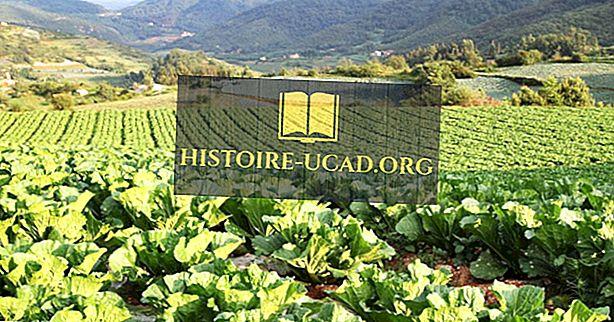 Top Aziatische landen voor biologische landbouw