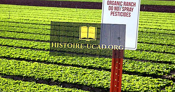 Top Põhja- ja Lõuna-Ameerika riigid mahepõllumajanduse jaoks