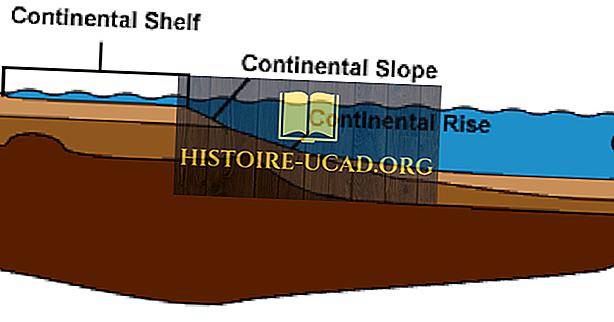 Ce este un raft continental?