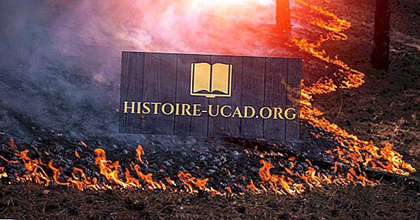 Kaj povzroča požar?