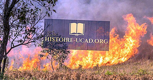 Kā izplatās ugunsgrēks?