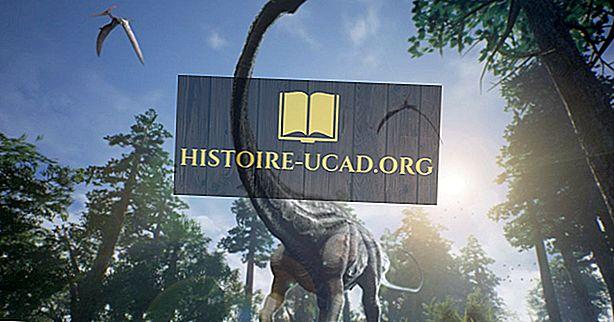 Jaké jsou rozdíly mezi ptačími a neleteckými dinosaury?