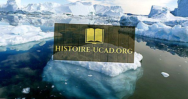 Wo werden Eisberge am häufigsten gefunden?