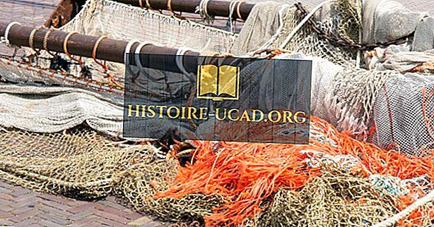 Jaké jsou dopady rybolovu vlečnými sítěmi na životní prostředí?