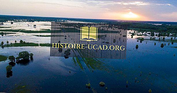 Τι είναι ένα λιβάδι πλημμύρας;