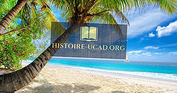 Jaký typ klimatu má Karibik?