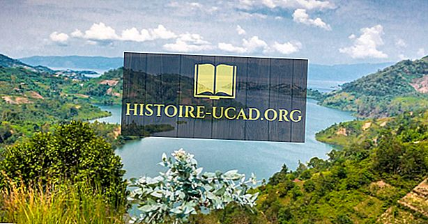 Kokie yra Kivu ežero pagrindiniai srautai ir išpylimai?