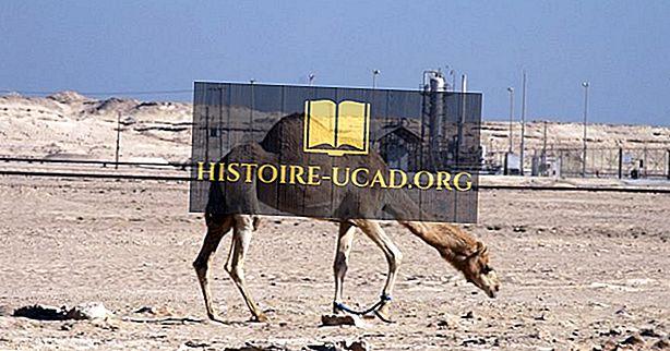 Missä Arabian aavikko Lie?