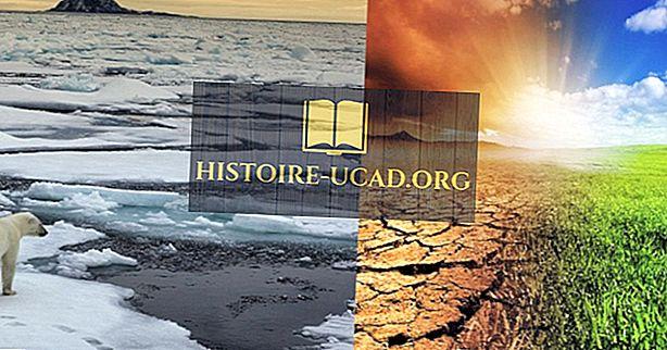 Как климатичните промени засягат различните екосистеми на Земята?