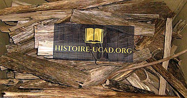 Neteisėtos agarwood konfiskacijos pagal šaltinius ir paskirties šalis