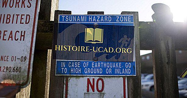 Cunami: kad tektonika un ūdens apvienojas