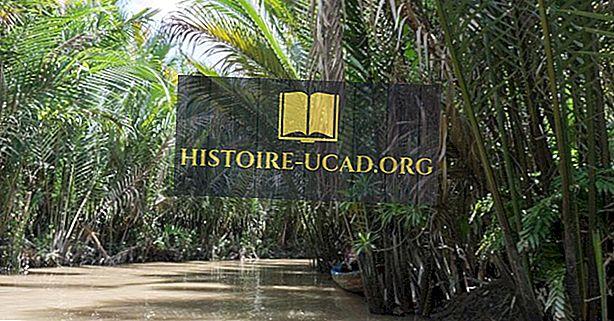 Vietnam'ın Ekolojik Bölgeleri