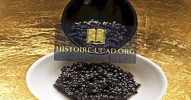 Den ulovlige kaviarhandel - land mest involvert
