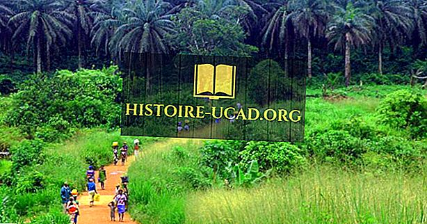 Ekologické regiony Beninu