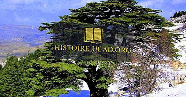 A természetvédelmi területek és a védett területek Libanonban