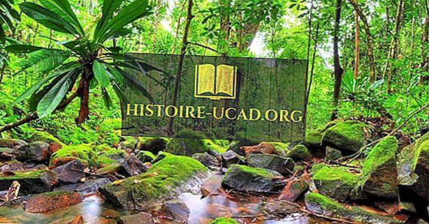 Националните паркове, резервати и защитени територии на Мадагаскар