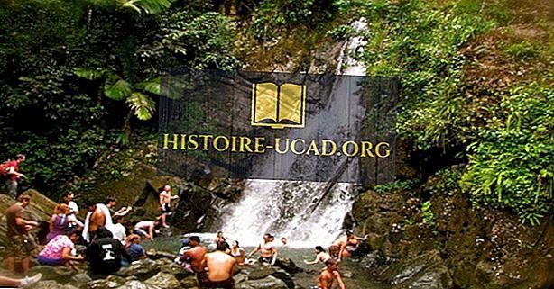 El Yunque Rainforest, Puertoriko