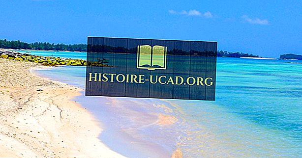 заобикаляща среда - Изчезващи Тувалу: Първата модерна нация към Drown?