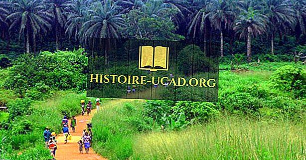 Kawasan Ekologi Nigeria
