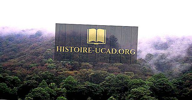 Ökologische regionen von nicaragua