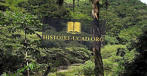 Ekologické regiony Hondurasu