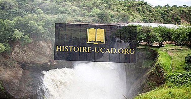 Ugandan suuret joet