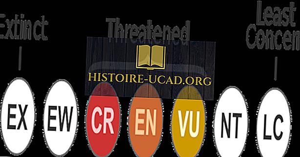 Mi az a IUCN piros lista?  Melyek az IUCN piros lista kategóriái?