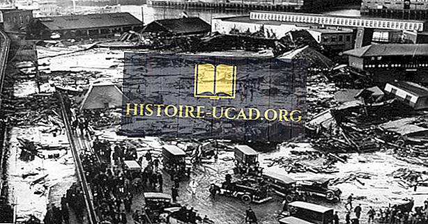 Hvad var de store melasse oversvømmelse af Boston?