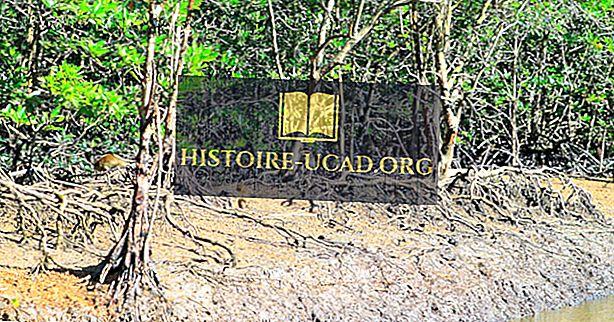 Zonas húmidas de Ramsar de importância internacional na Malásia