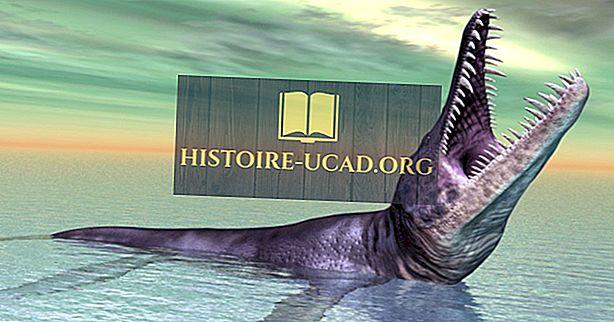 8 fantastiske forhistoriske dyr