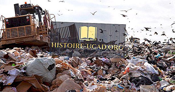Kako dolgo traja za razgradnjo odpadkov?