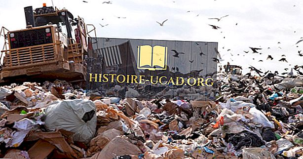 Quanto tempo leva para o lixo se decompor?