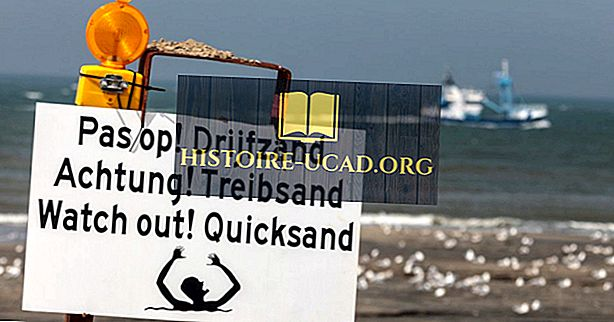 Čo je Quicksand?