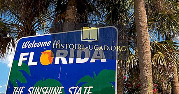 Heeft het ooit gesneeuwd in Florida?