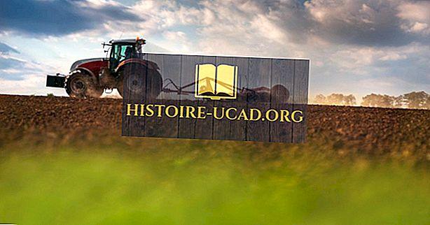 Mi az Agrár Társaság?