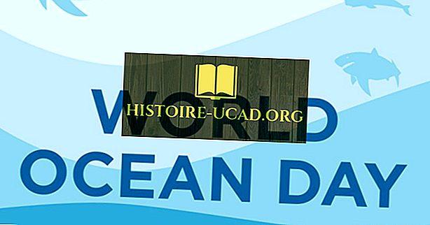 Kada ir kodėl Pasaulio vandenynų diena švenčiama?