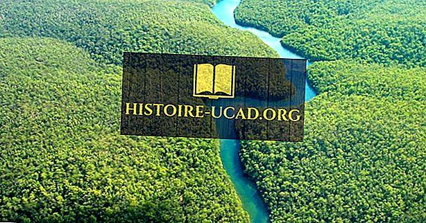 okolje - Reka Amazon
